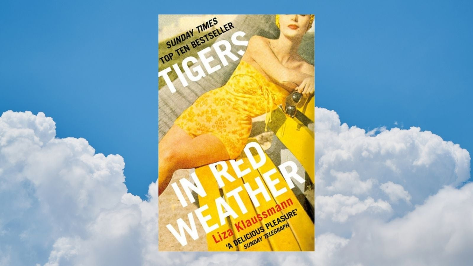 Tigers in Red Weather book cover with blue cloud background