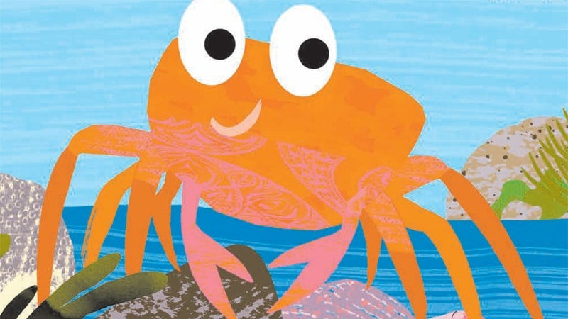 Tim Hopgood crab illustration
