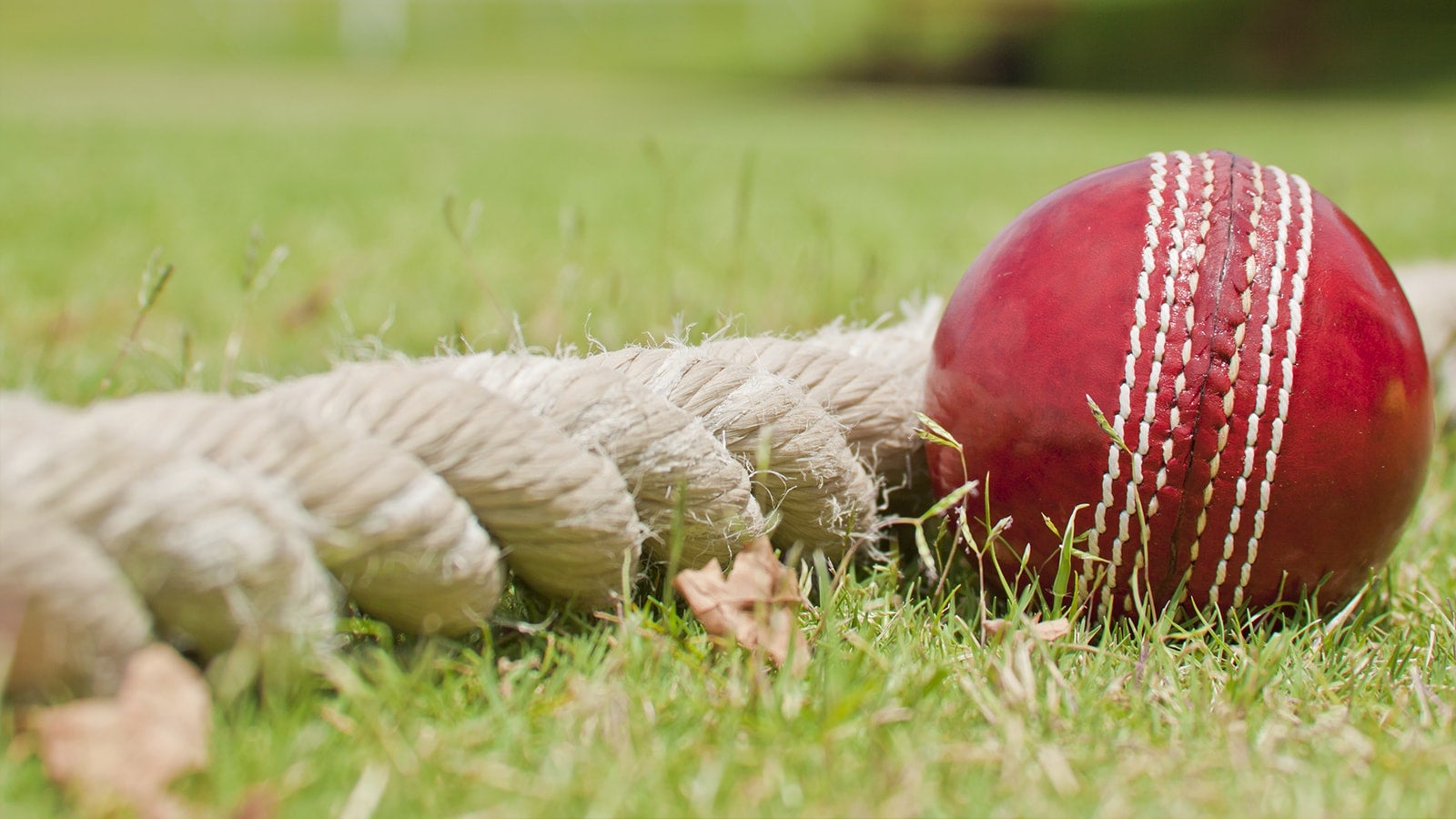 Red cricket ball on the boundary rope
