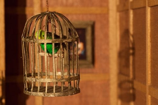 Tiny budgie on a perch in a small gold cage