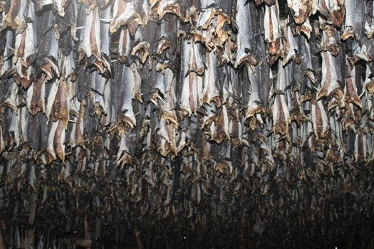 a room filled with fish hanging out to dry from the ceiling
