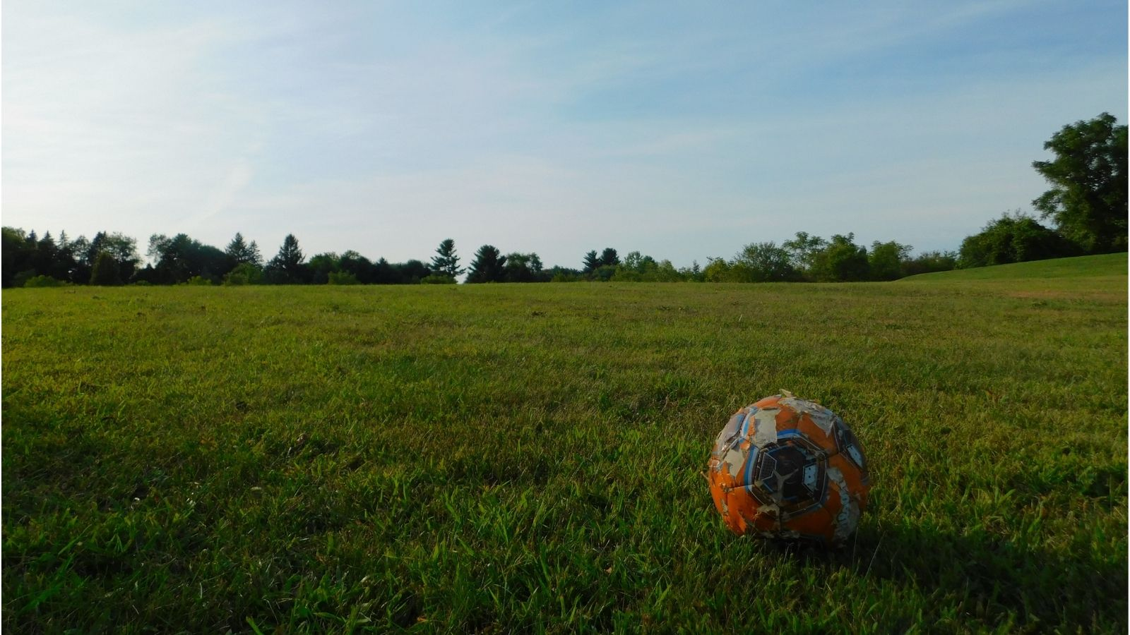 Old football on grass field