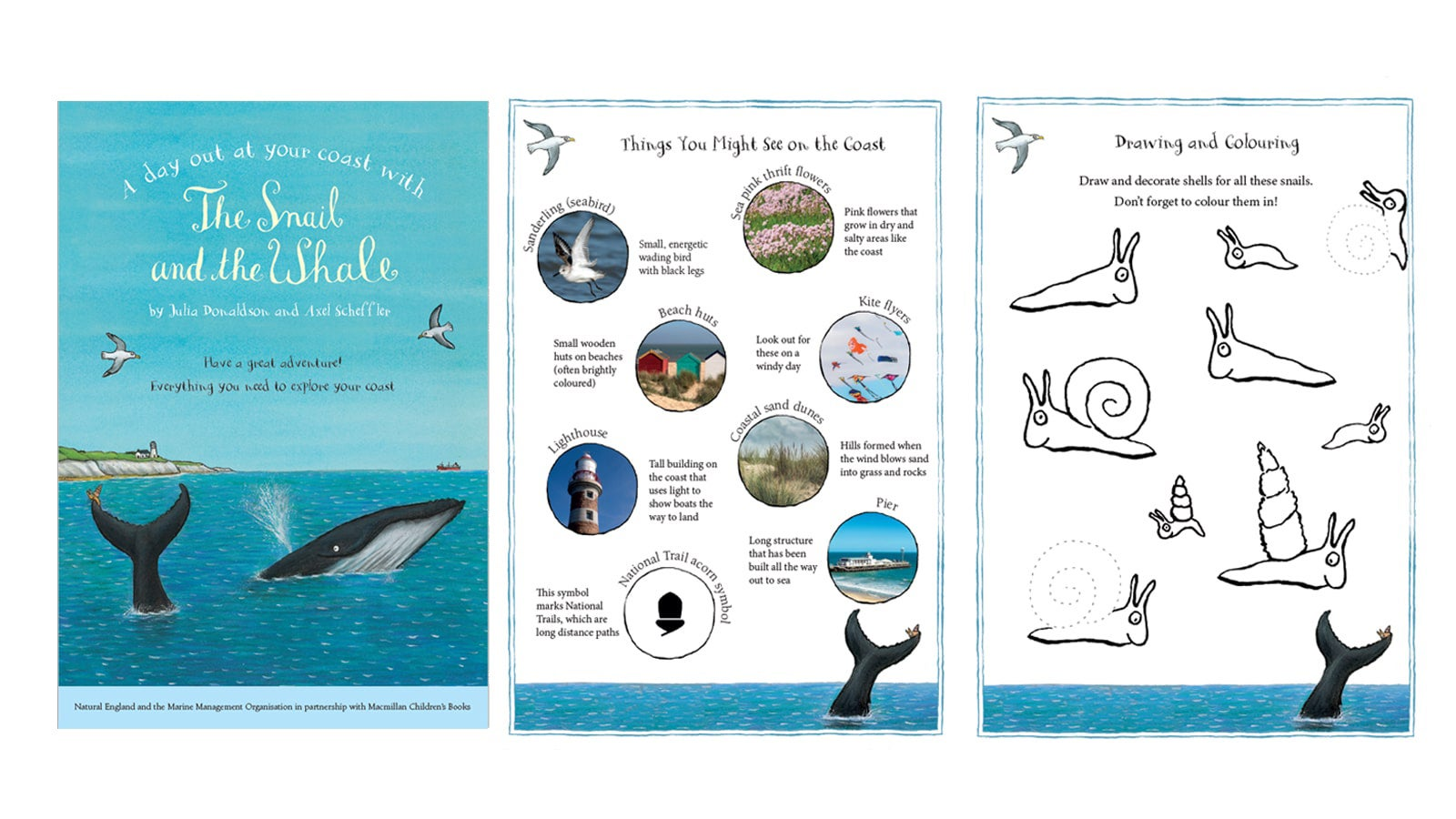 image showing 3 pages of the booklet - the front cover, fun facts and a colouring sheet