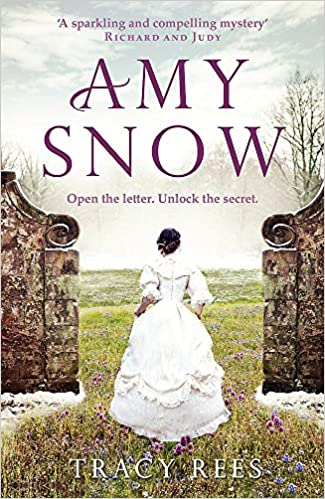 Book cover for Amy Snow