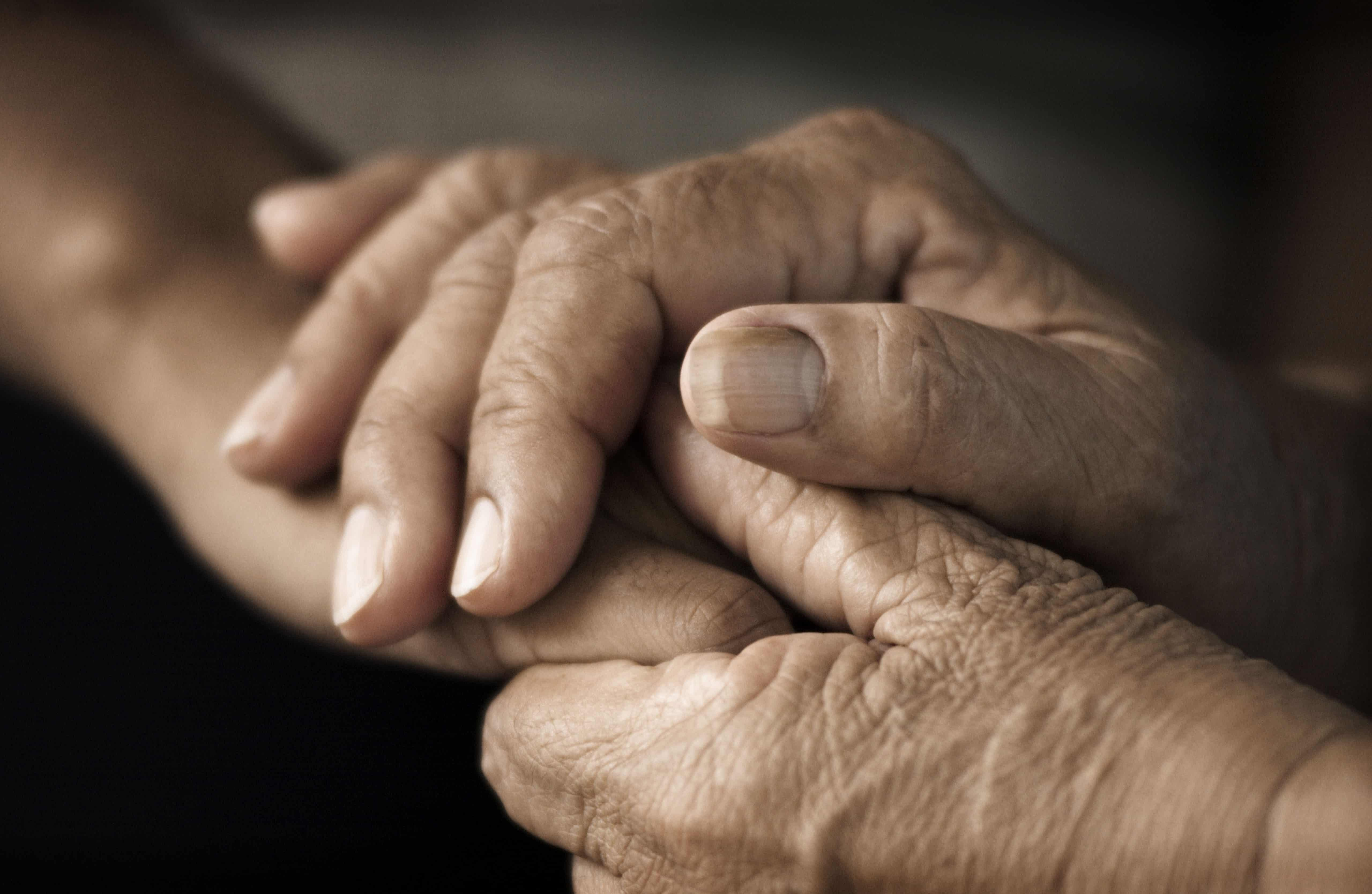 A photo of a paid of old hands, holding a younger person's hand
