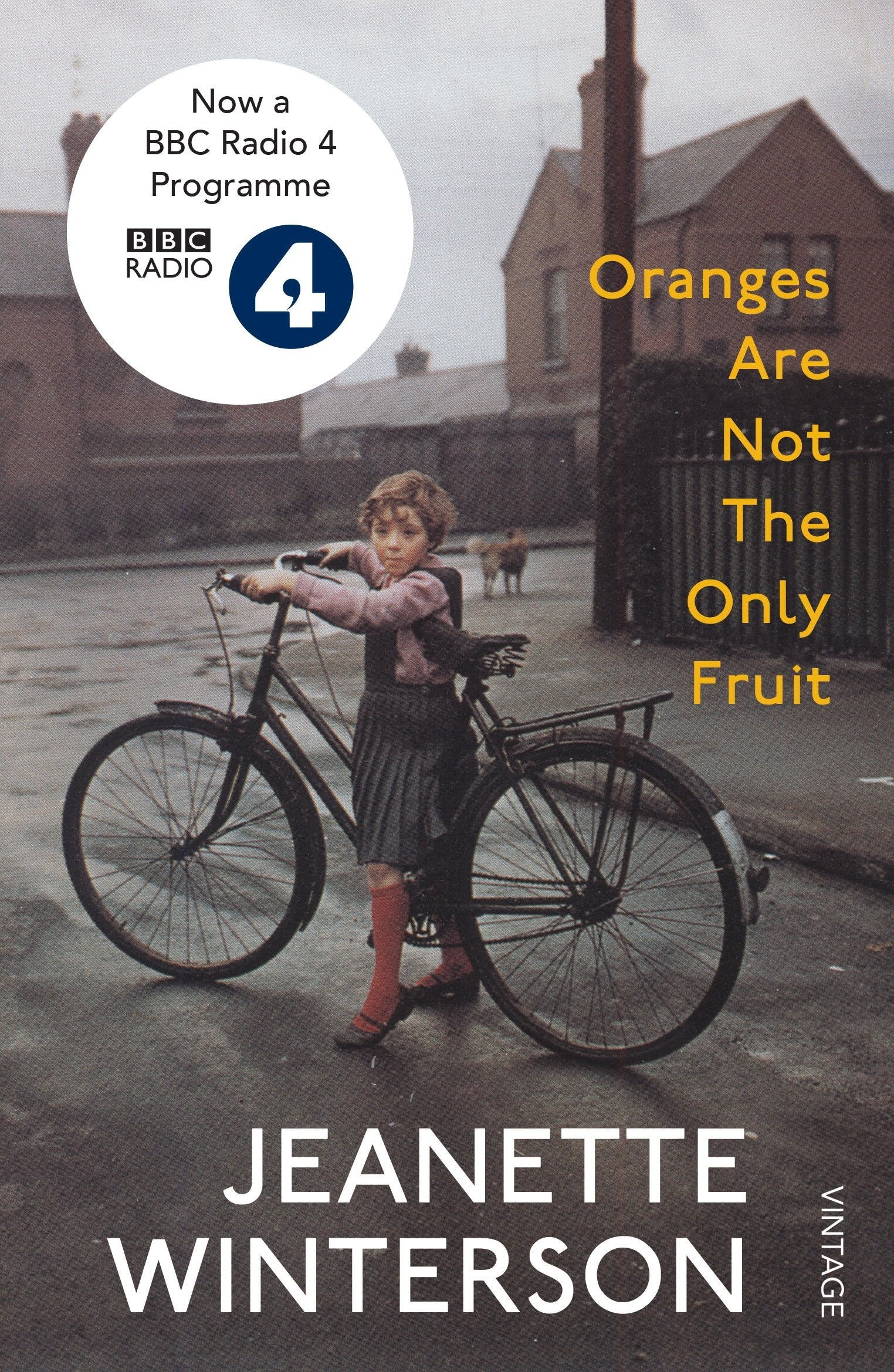 Book cover for Oranges Are Not The Only Fruit