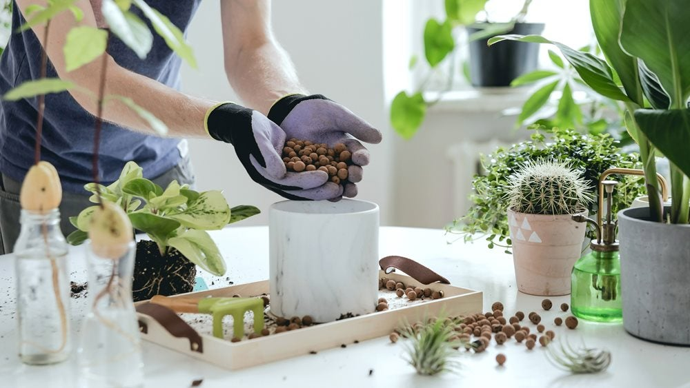 Man filling plant pot on table covered in plants