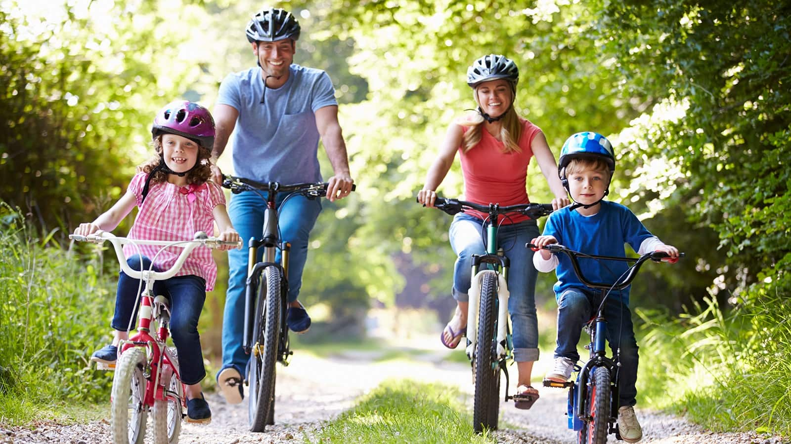 a family cycling on a woodland path in the sunshine