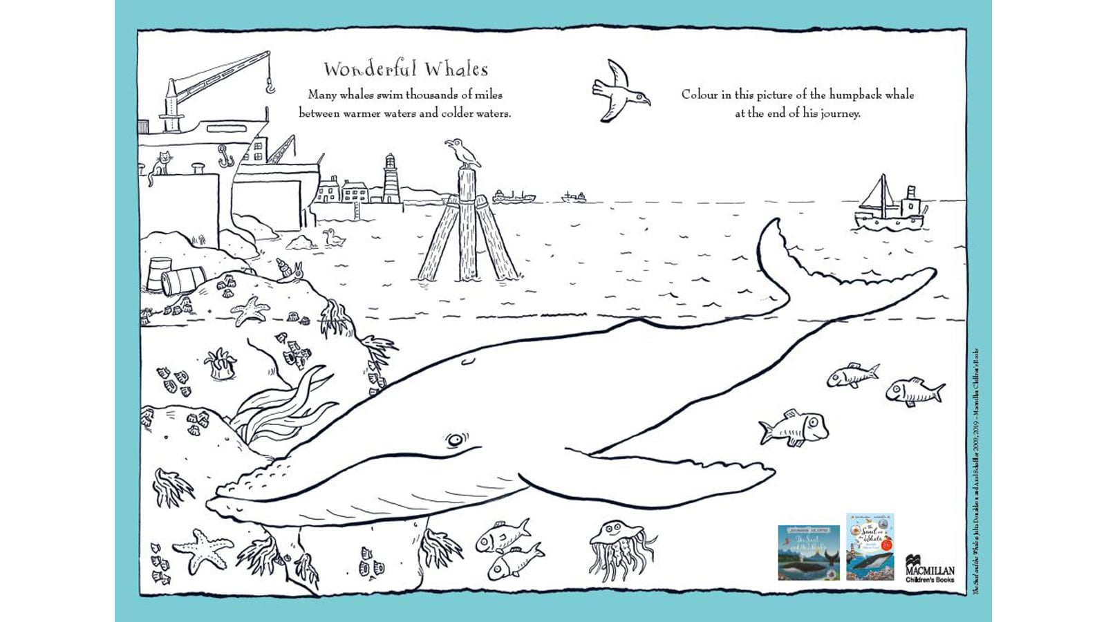 Activity sheet - Wonderful whales colouring sheet - The Snail and the Whale - Julia Donaldson - Axel Scheffler