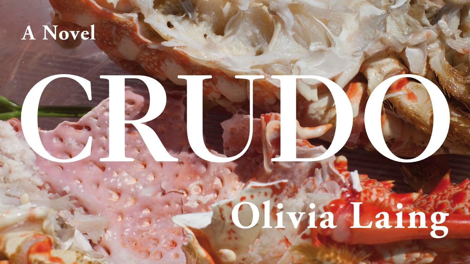 Olivia Laing Crudo cover artwork