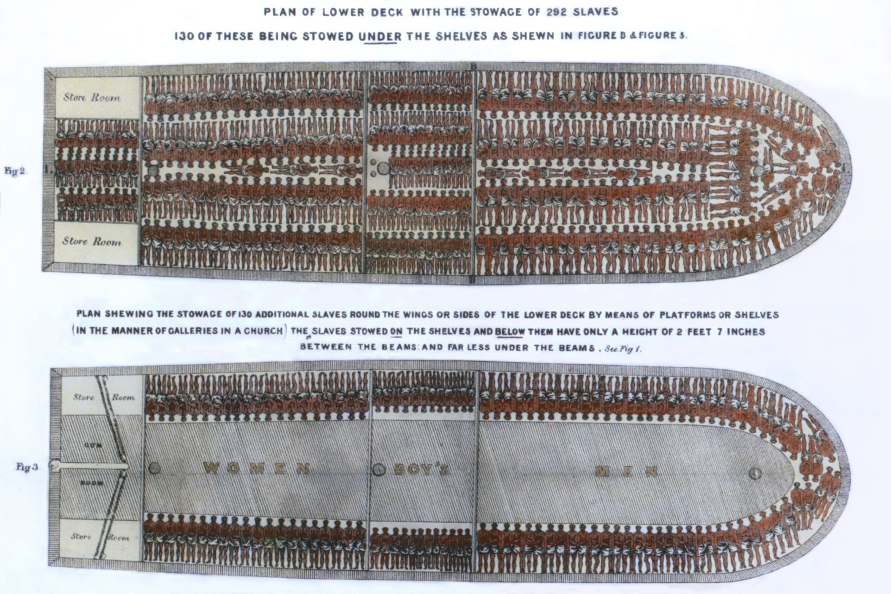 Brooks slave ship illustration