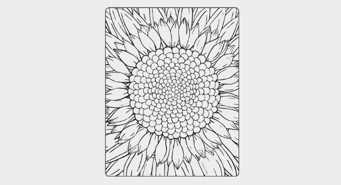 Flower colouring sheet