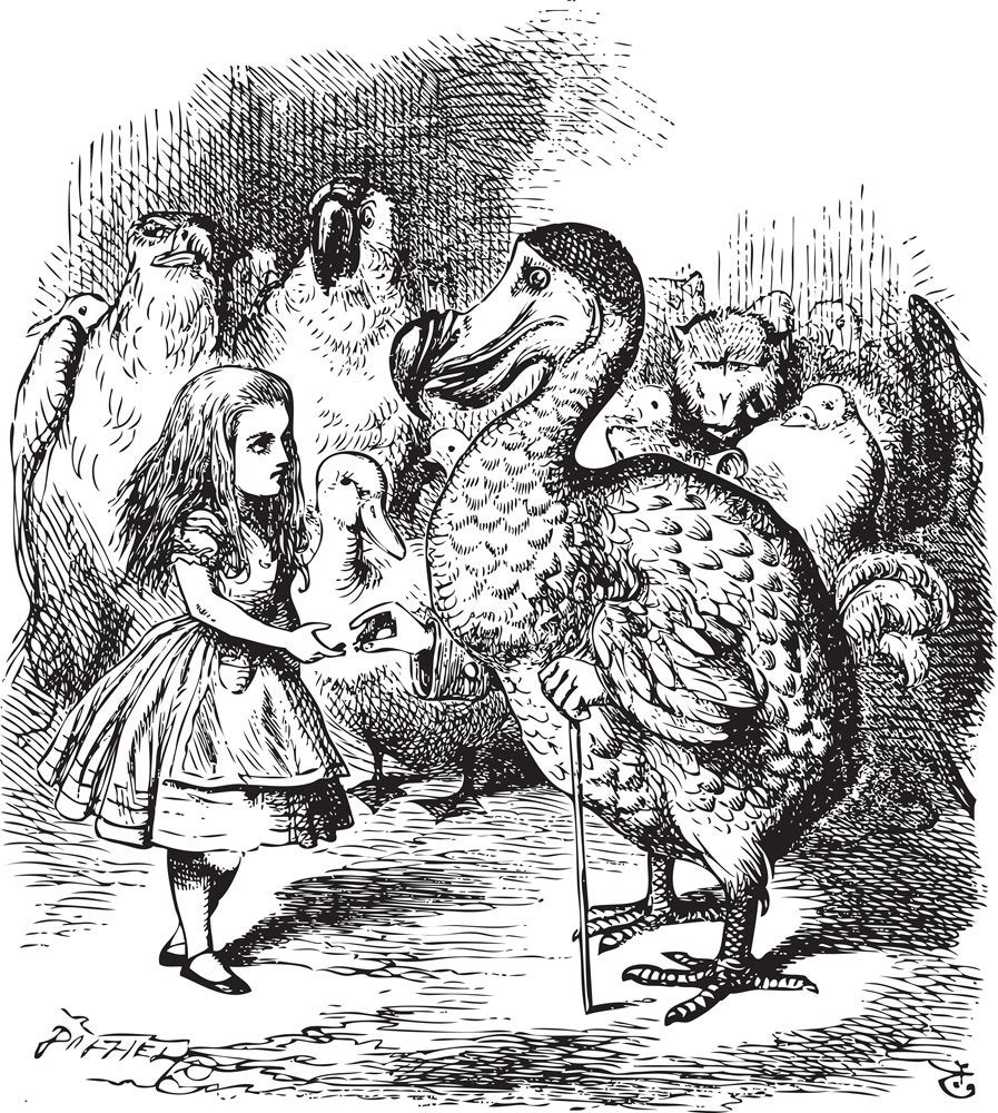 Alice and the Dodo, an example of John Tenniel's crosshatched shading
