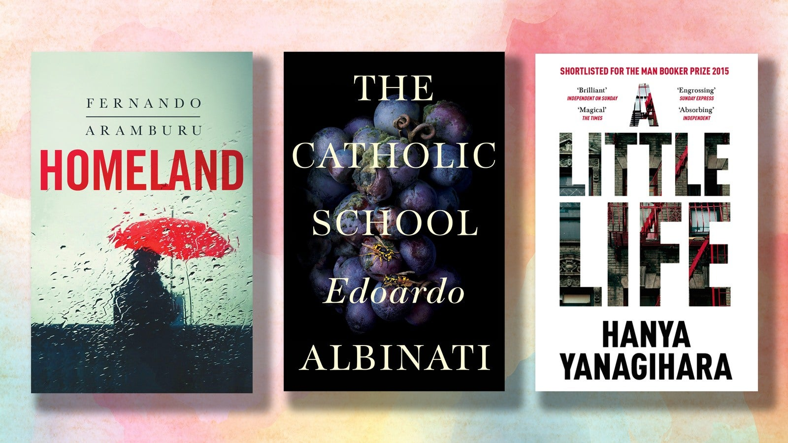 Book covers for Homeland, The Catholic School and A Little Life