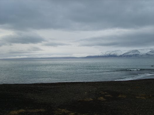 Black sand of Iceland's northern beaches