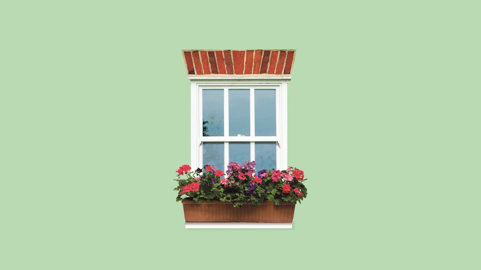 A green background with a window and a windowbox full of flowers. Illustration taken from the jacket of An Unsuitable Match by Joanna Trollope.
