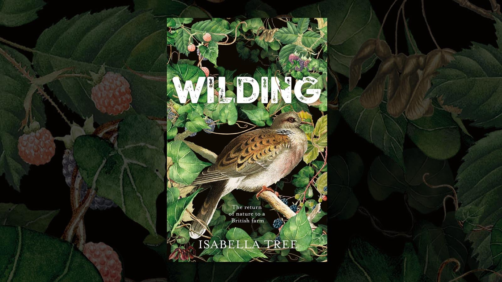 Jacket cover for Wilding by Isabella Tree , featuring a bird surrounded by foliage
