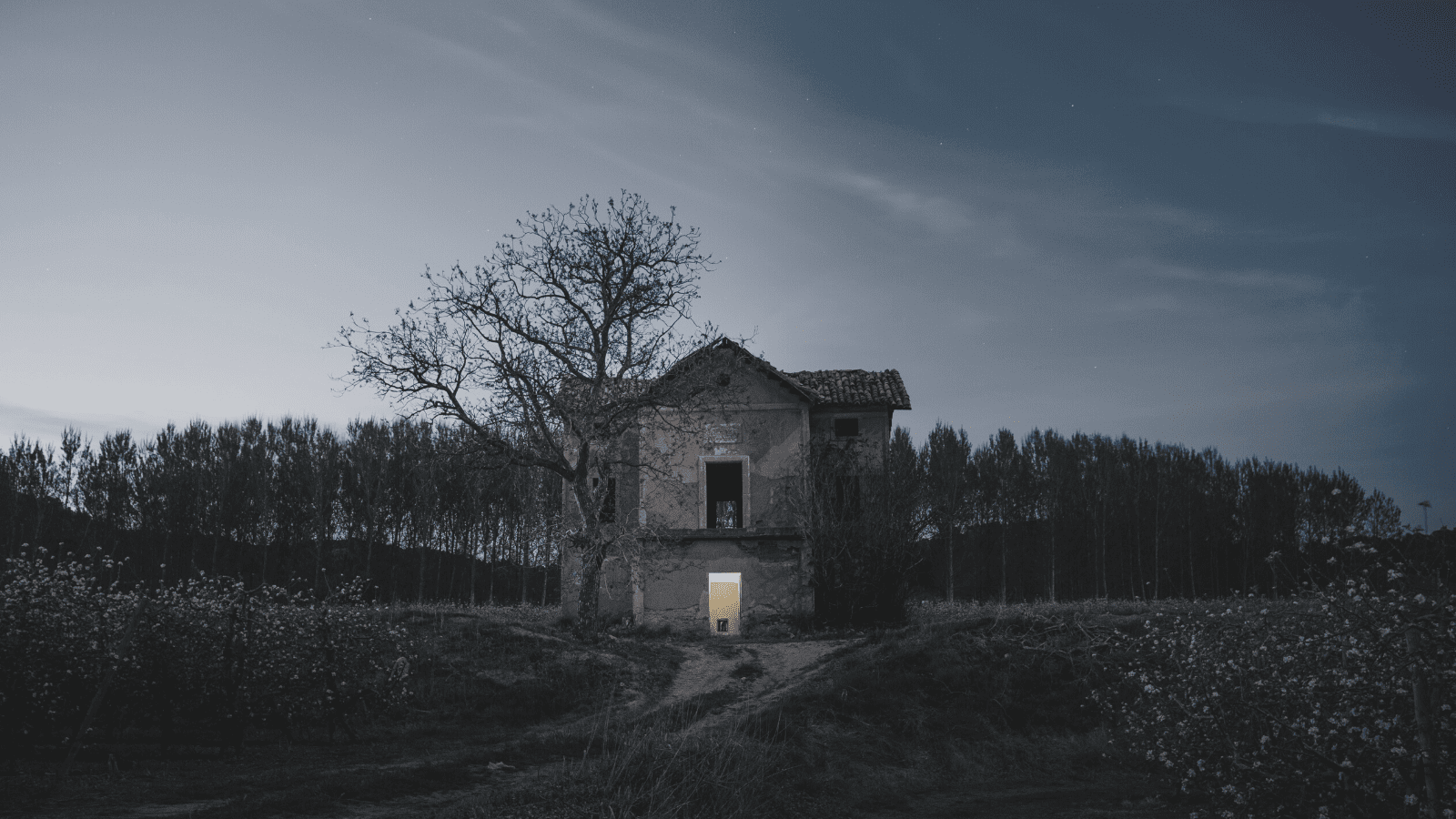 Spooky looking house in field with trees