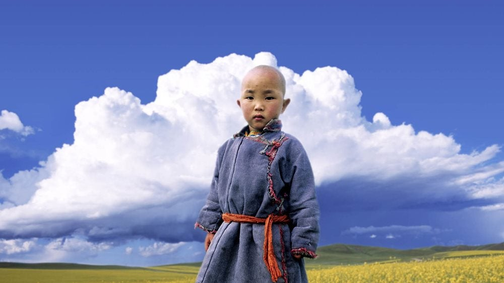 Small child in a field