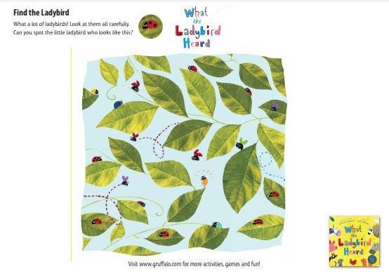 Ladybird Heard - Spot the Ladybird.JPG