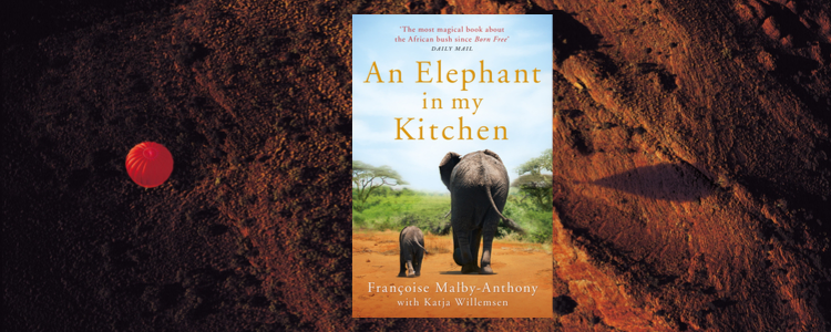 Picture of the book  'An Elephant in my Kitchen' - featuring a baby elephant walking with it's parent