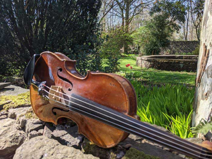 A violin sitting on a  small stone wall in front of a garden