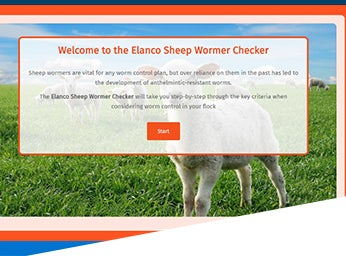 Sheep wormer checker
