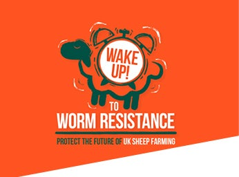 Wake up to worm resistance with Zolvix