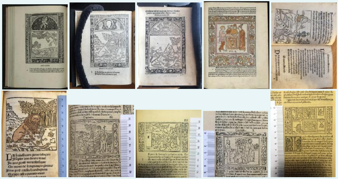 C15 Book trade image.