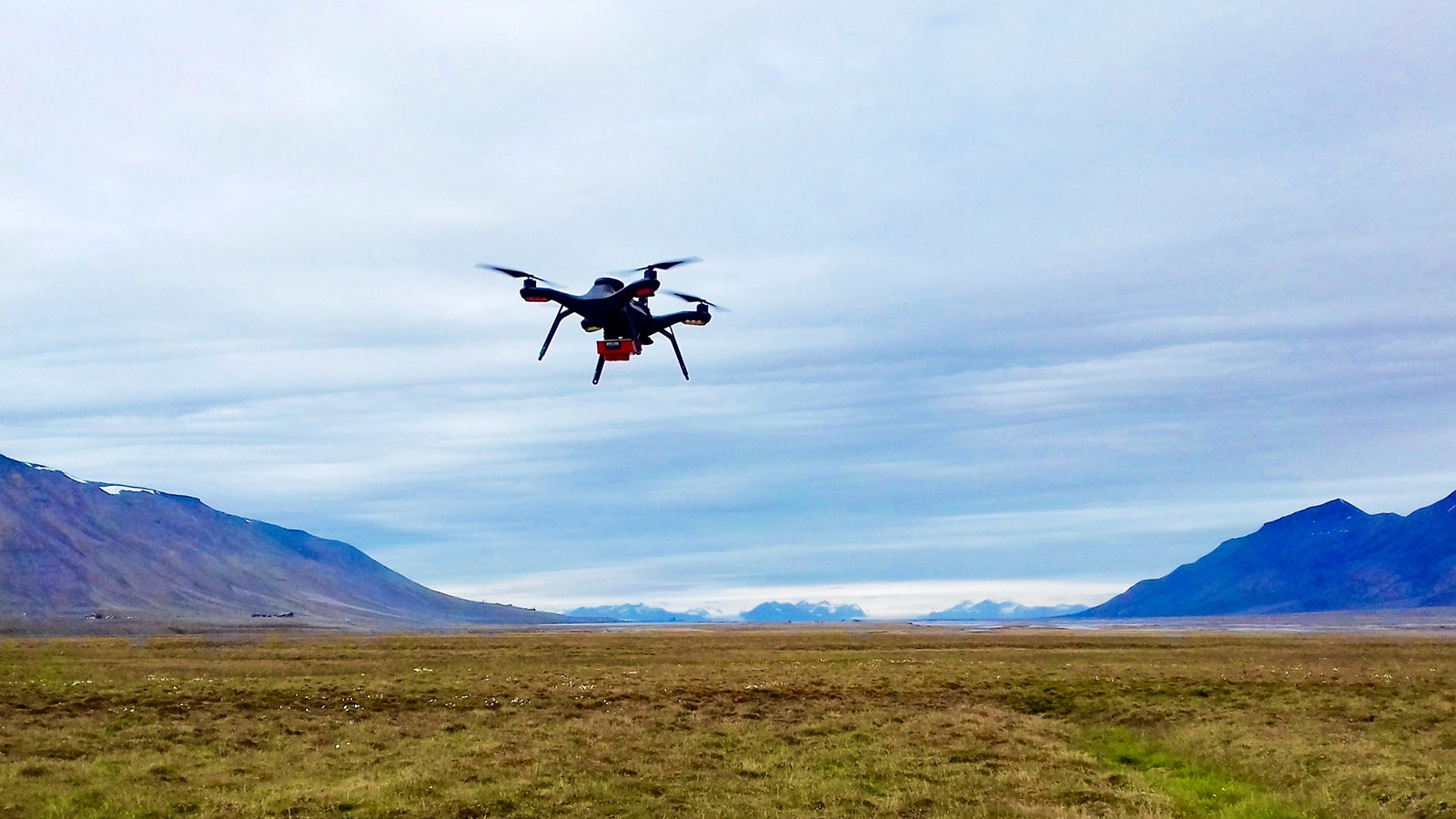 Using an infrared camera mounted on a 3DR Solo drone to map plant species, plant chemistry and vegetation health across the Arctic tundra. Credit: Eleanor Thomson.