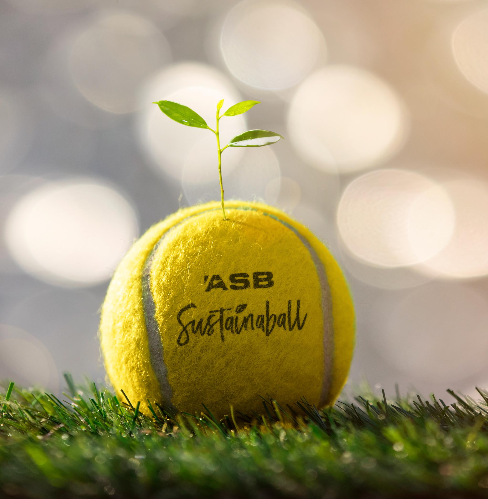 ASB Sustainaball Ball